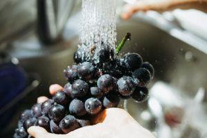 pranje grožđa i drugog voća kao jedan od načina za čišćenje parazita iz organizma