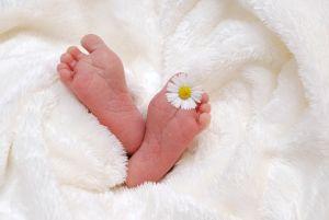 Stopala bebe sa cvetom između prstiju