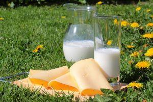 Mleko i sir su najbolja hrana za žene u menopauzi
