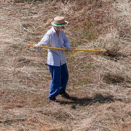Kosač i ljudi koji rade u polju imaju prekomerno znojenje