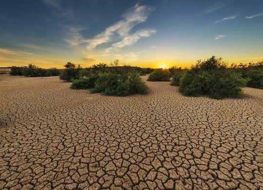Kada počne leto i suša najvažnije je znati šta je dehidratacija i kako je sprečiti